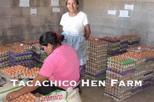 Tacachico Hen Farm