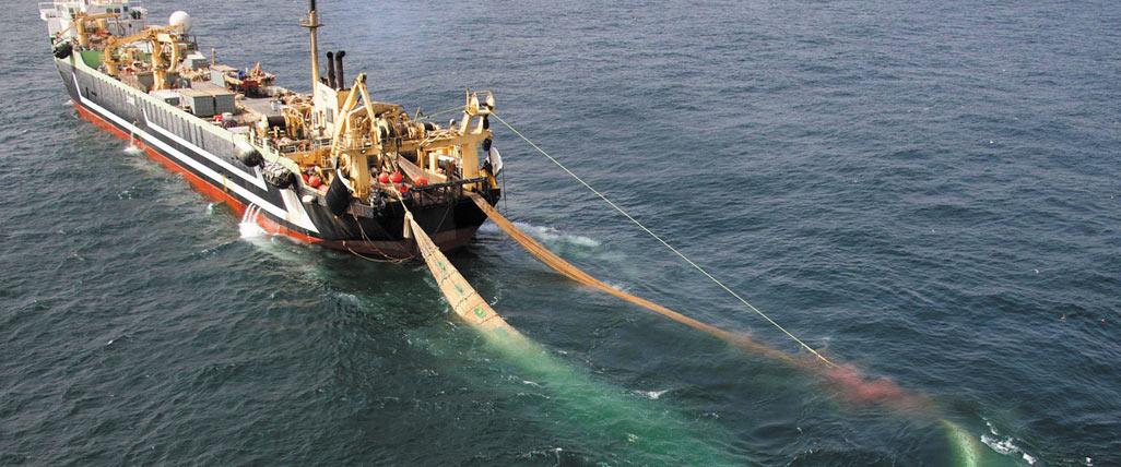 Stop the Super Trawler