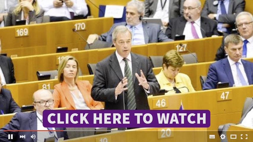 nigel_video_eu.jpg