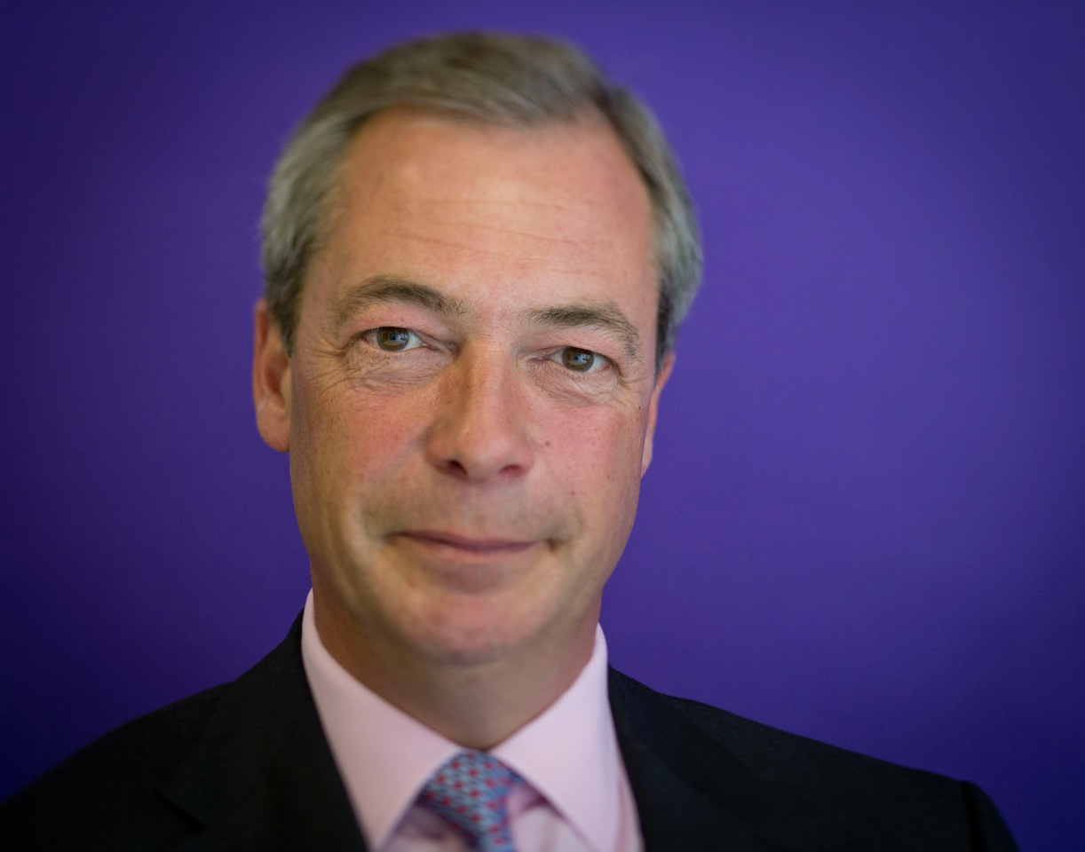 Statement from UKIP Leader Nigel Farage on EU Referendum Designation ... Work Party Meme