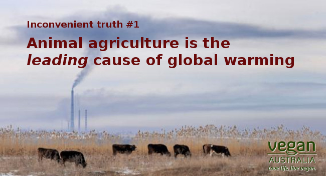 global warming and agriculture Global warming – agriculture's impact on greenhouse gas emissions agdm newsletter april 2008 (third in series) in this article we will examine the size and sources of greenhouse gas emissions from the agricultural sector we will also discuss greenhouse gas sinks (the removal or sequestration of gases) finally, we will examine ways.