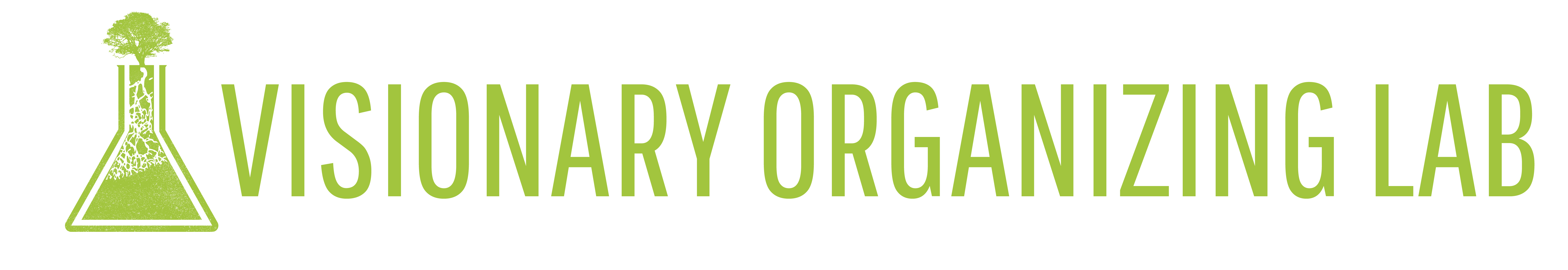 Visionary Organizing Lab