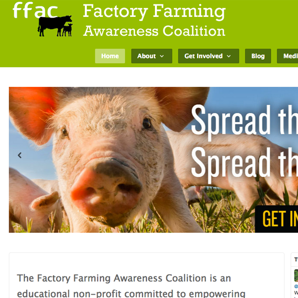 FFAC - home page