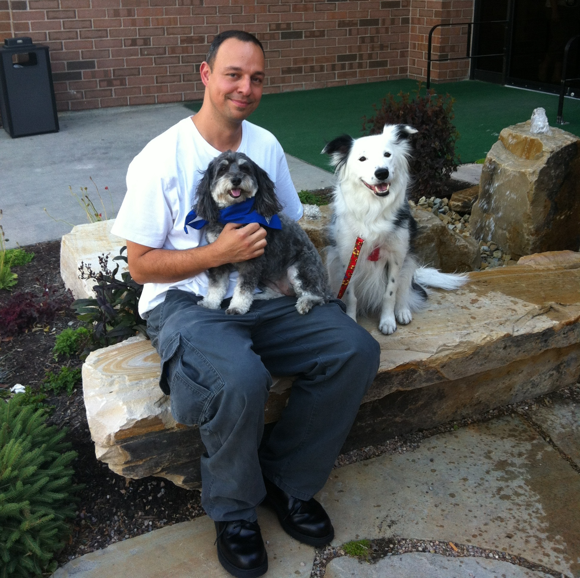 Dogs Rescue Hope For Paws