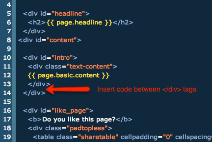 where to insert embed code in a NationBuilder page
