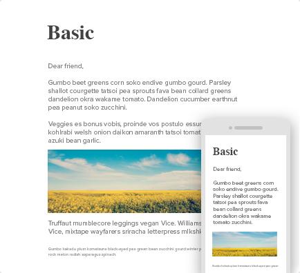 eblast_basic.png