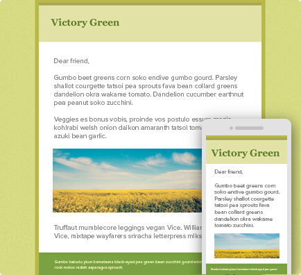 eblast_victory_green.png