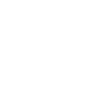 NationBuilder Agencies