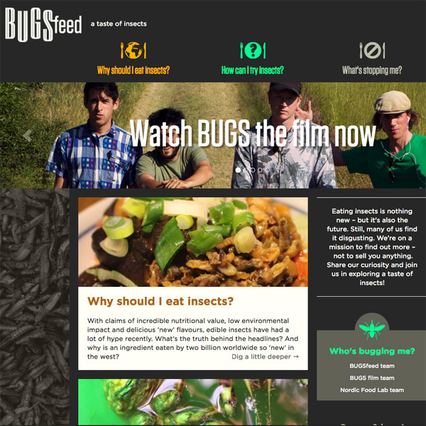 BUGSfeed – a taste of insects