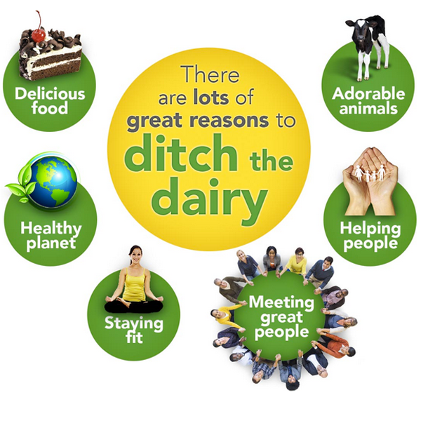 FFAC - ditch the dairy page