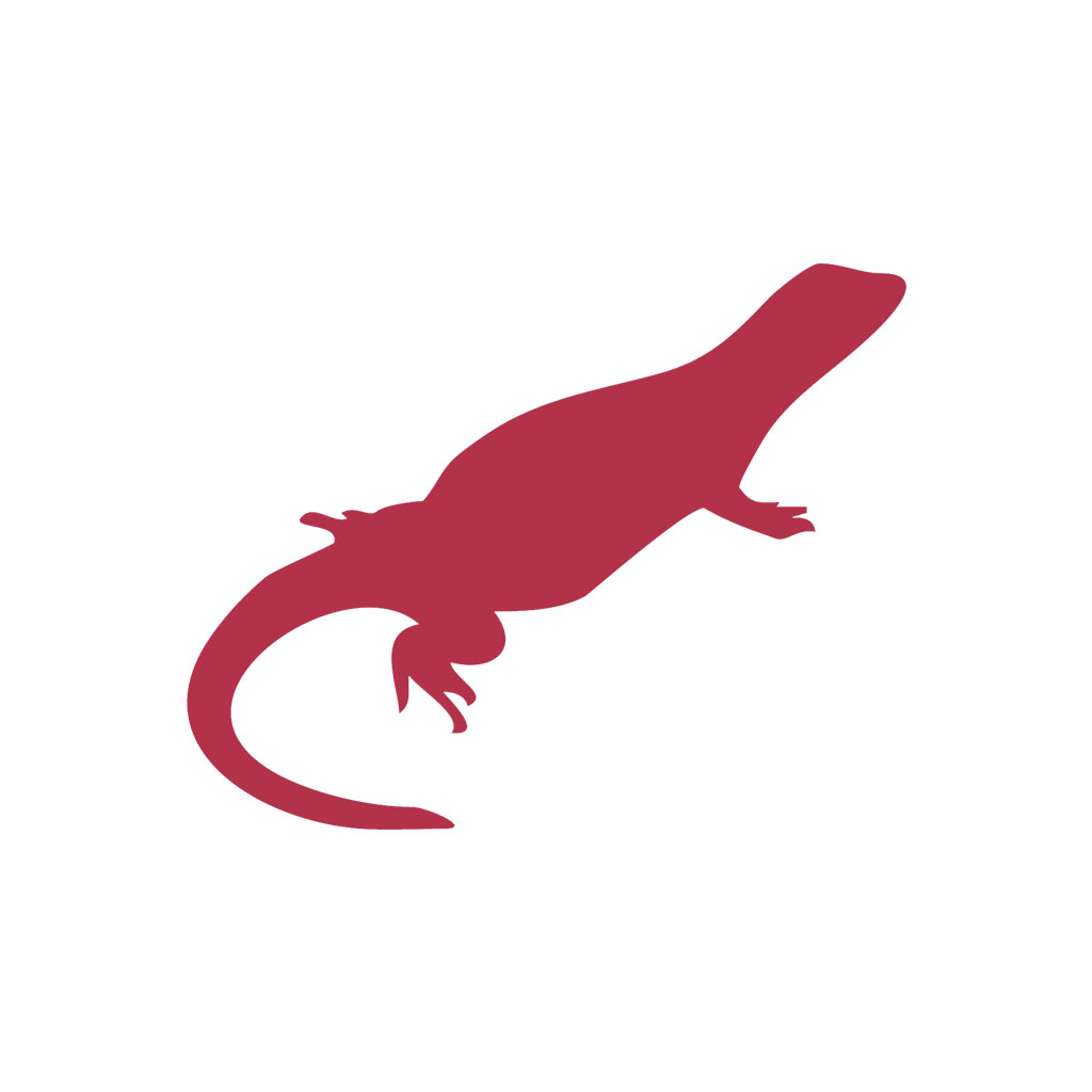 Chuckwalla Design