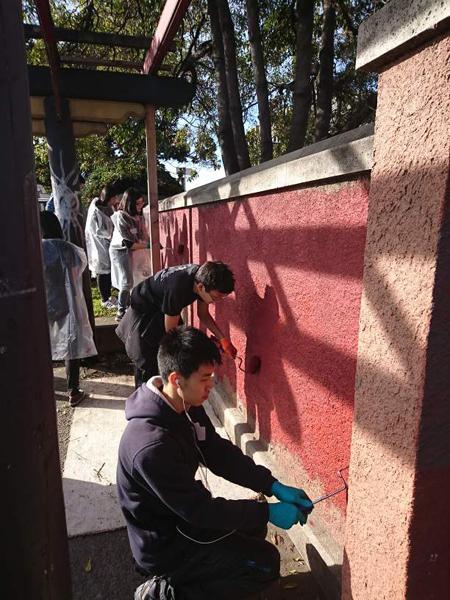 madison-paint_wall.jpg