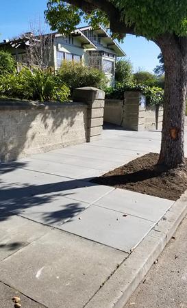 mckinley-spruce-sidewalk.jpg