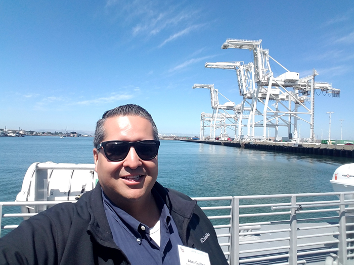 ferry-cranes.jpg