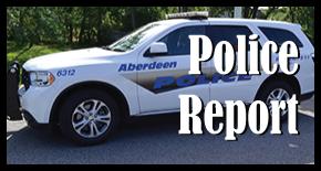policereport1.png