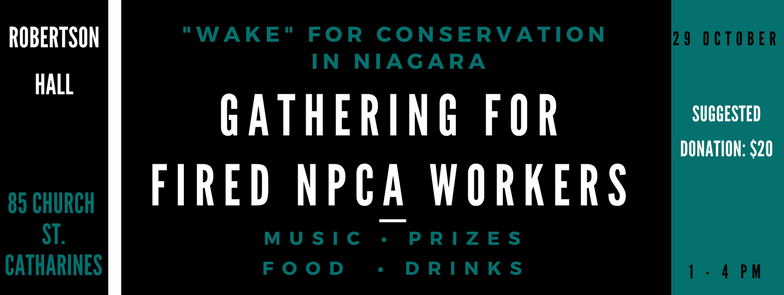 Wake_For_Conservation_In_Niagara-2.png
