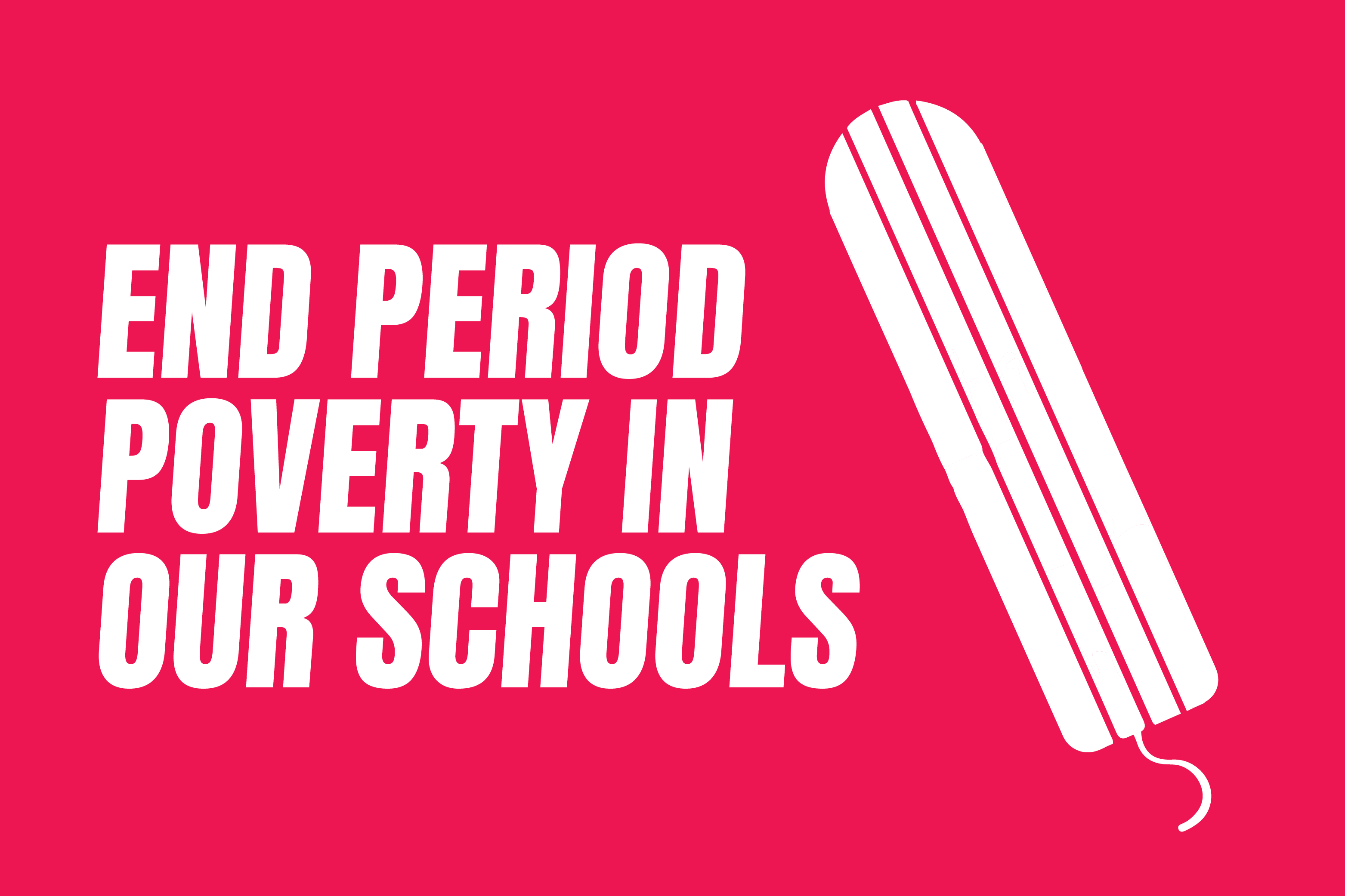 End period poverty in our schools - Abigail Boyd MP