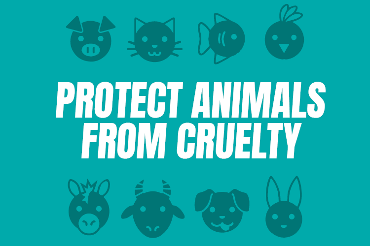 Protect Animals from Cruelty – Abigail Boyd MP