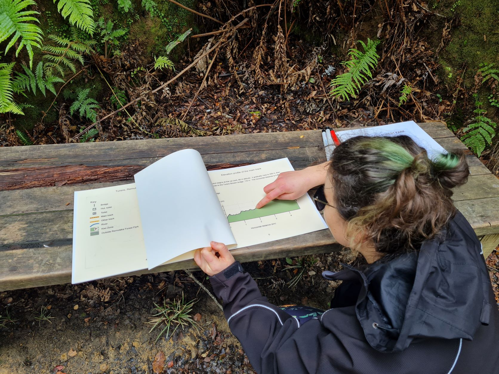 Mary in Remutaka Forest Park using large print version of track elevation profile, running fingers over it.  Map on a bench surrounded by leaf litter and fern fronds.