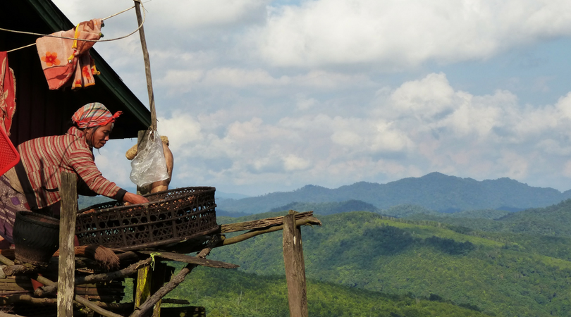 Laos_Pic_from_Canva.png