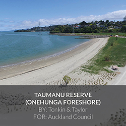 Project_Thumbnail_-_Taumanu_Reserve_Onehunga_Foreshore_by_Tonkin_and_Taylor.jpg