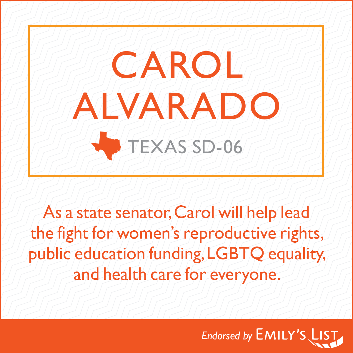 State-Local-Carol-Alvarado.png