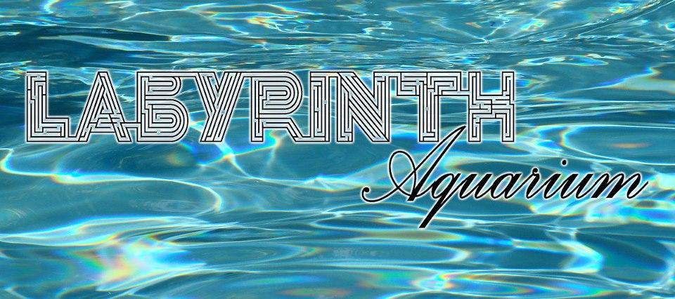 labyrinth_aquarium.jpg