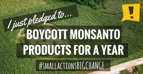 actionstation.monsanto.png
