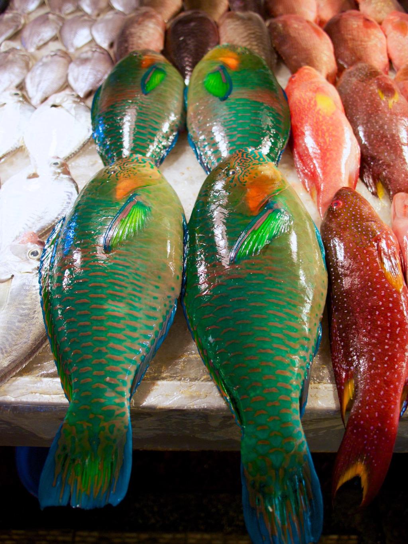 Fish Market in Donggang Township, Taiwan