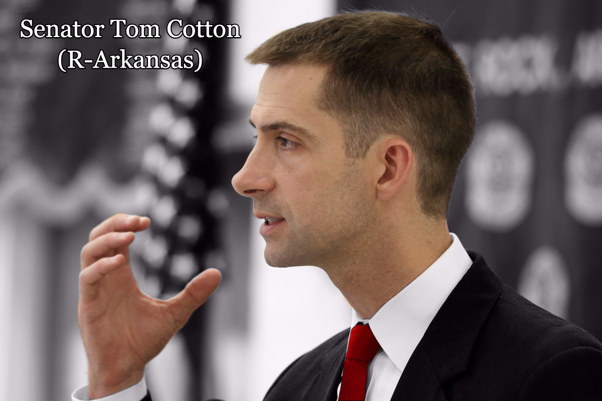 Senator Tom Cotton (R-Arkansas)