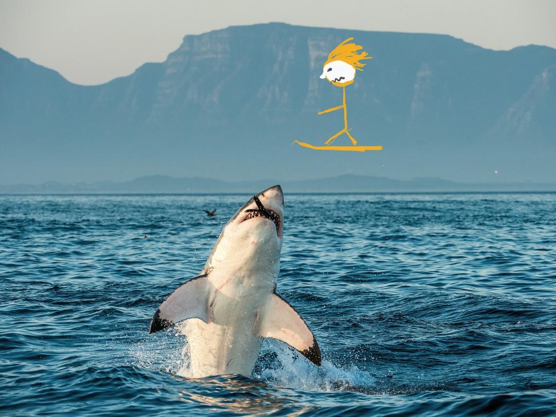 Shark-Jump-1144x858.jpg