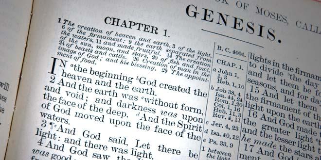 creationism.jpg