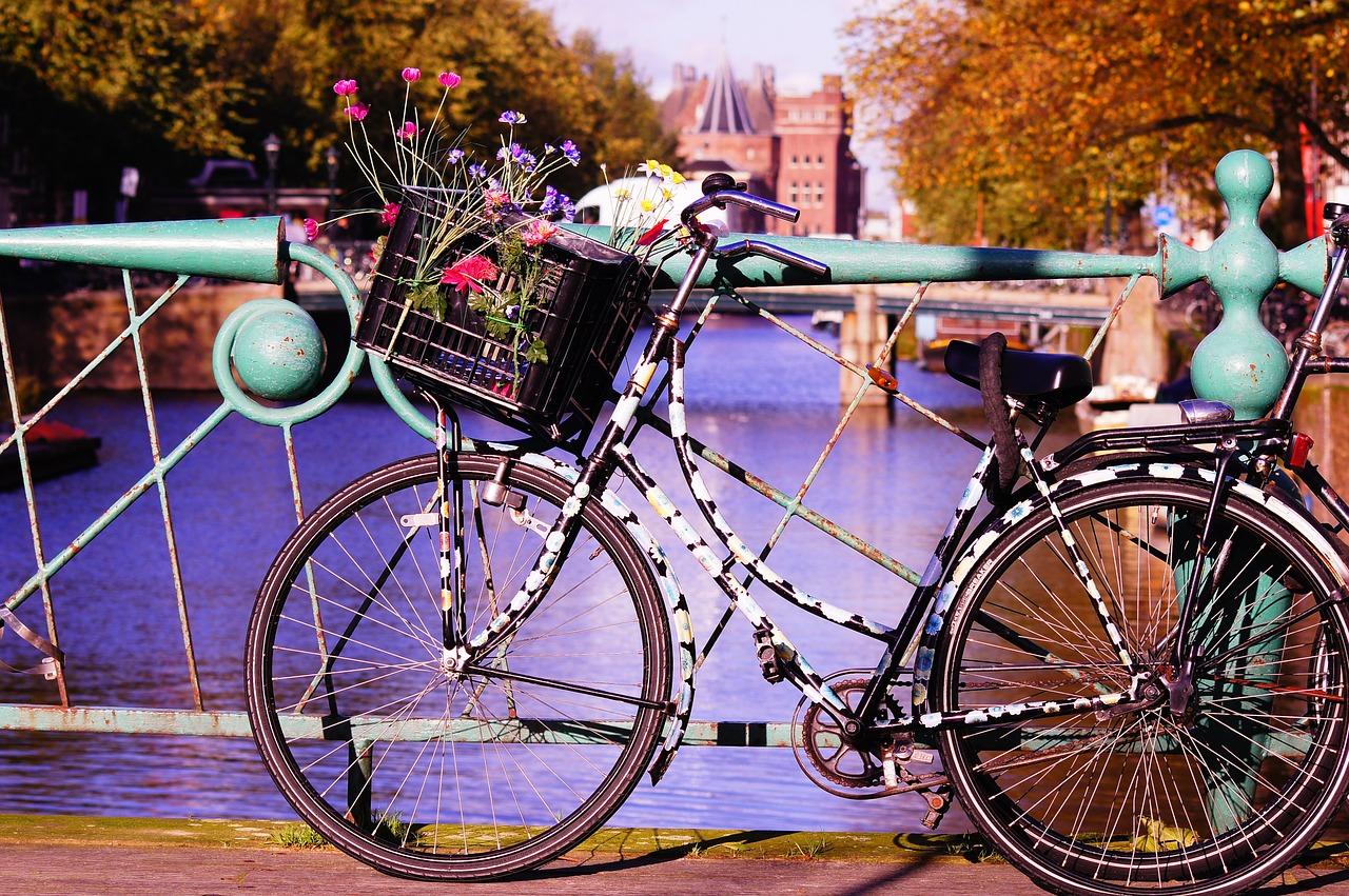 bike-1002939_1280.jpg