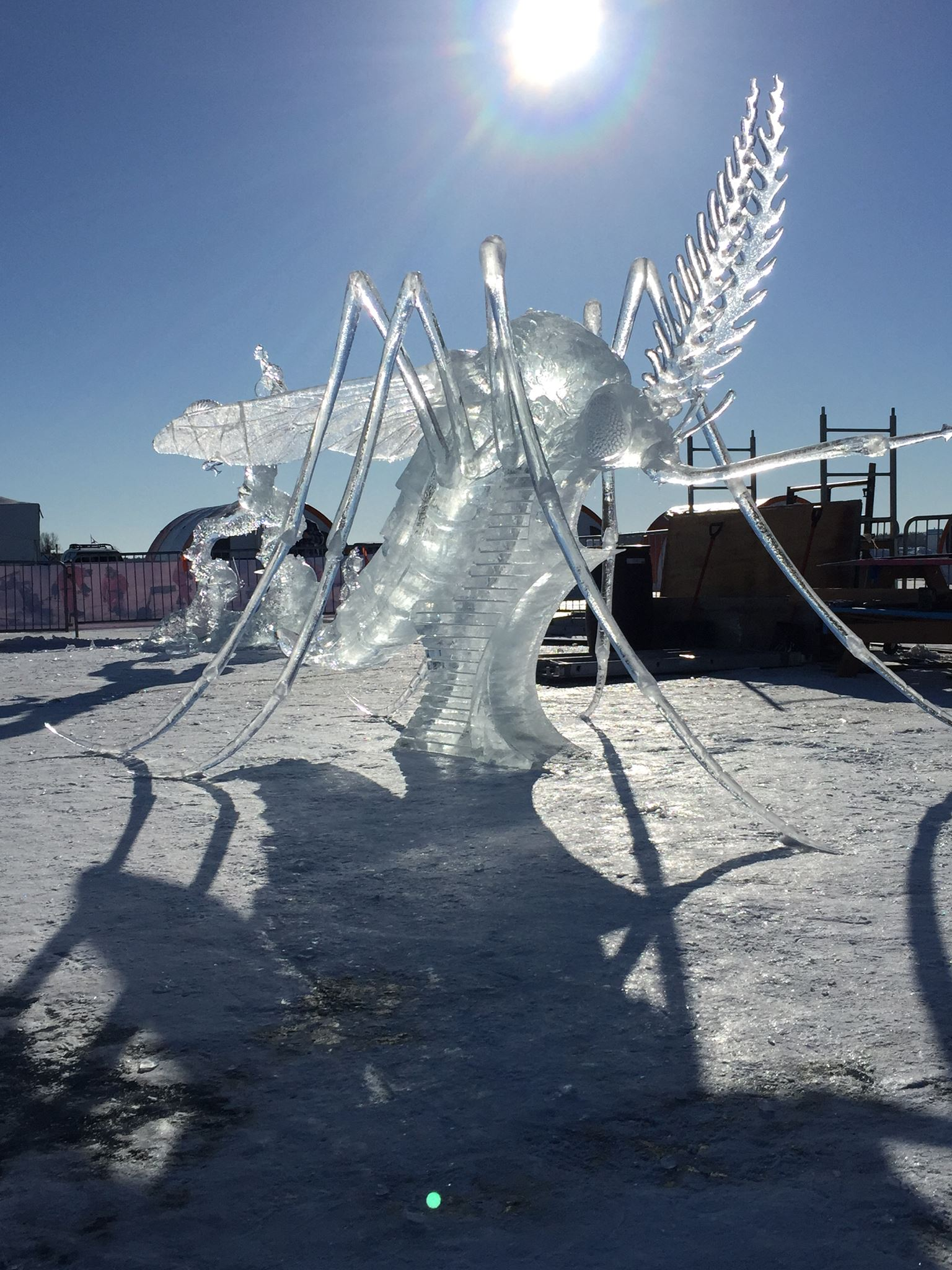 The Winning Entry at the Long John Jamboree's Ice Carving Competition in 2015