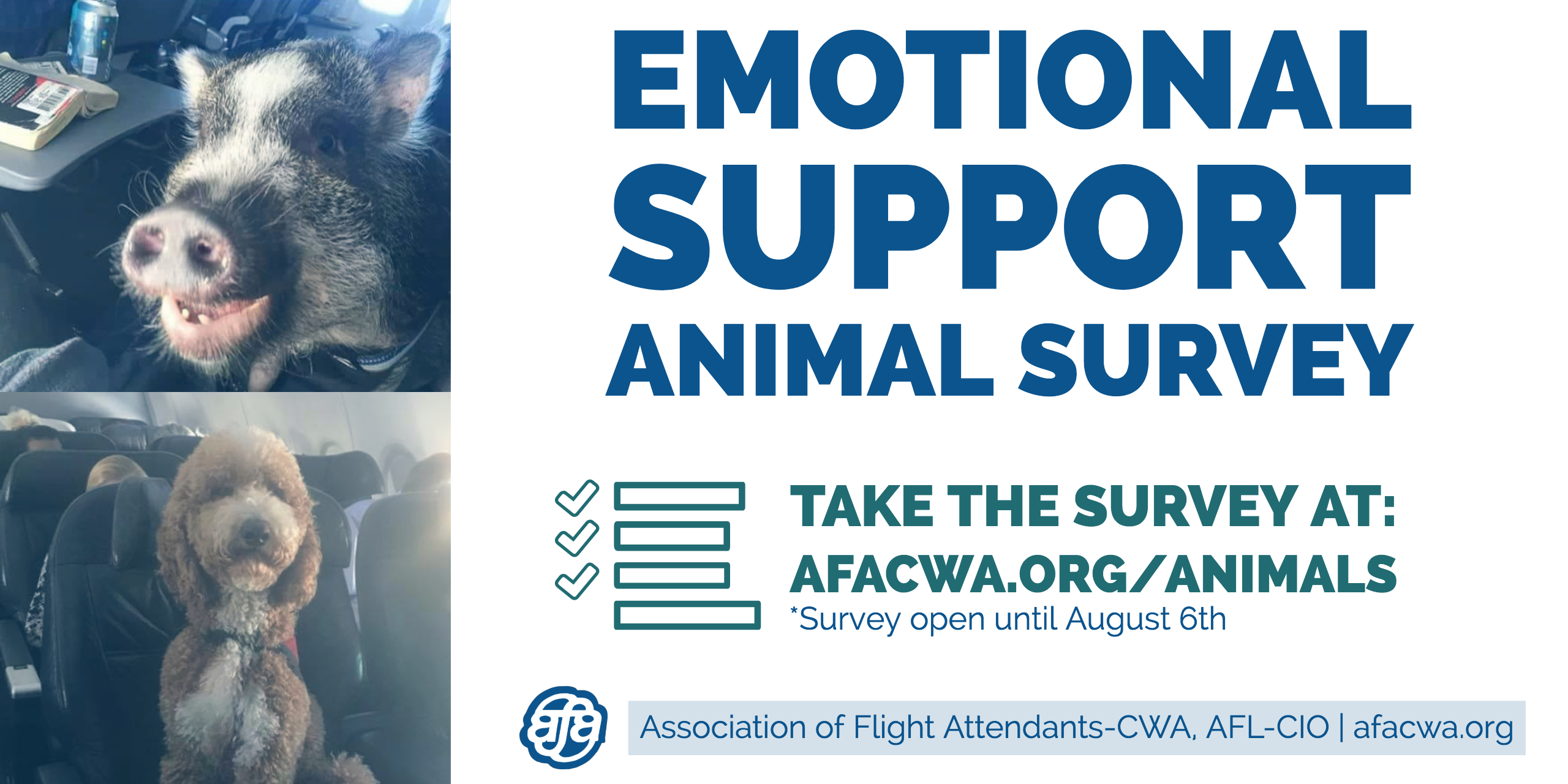 Emotional Support Animal Survey
