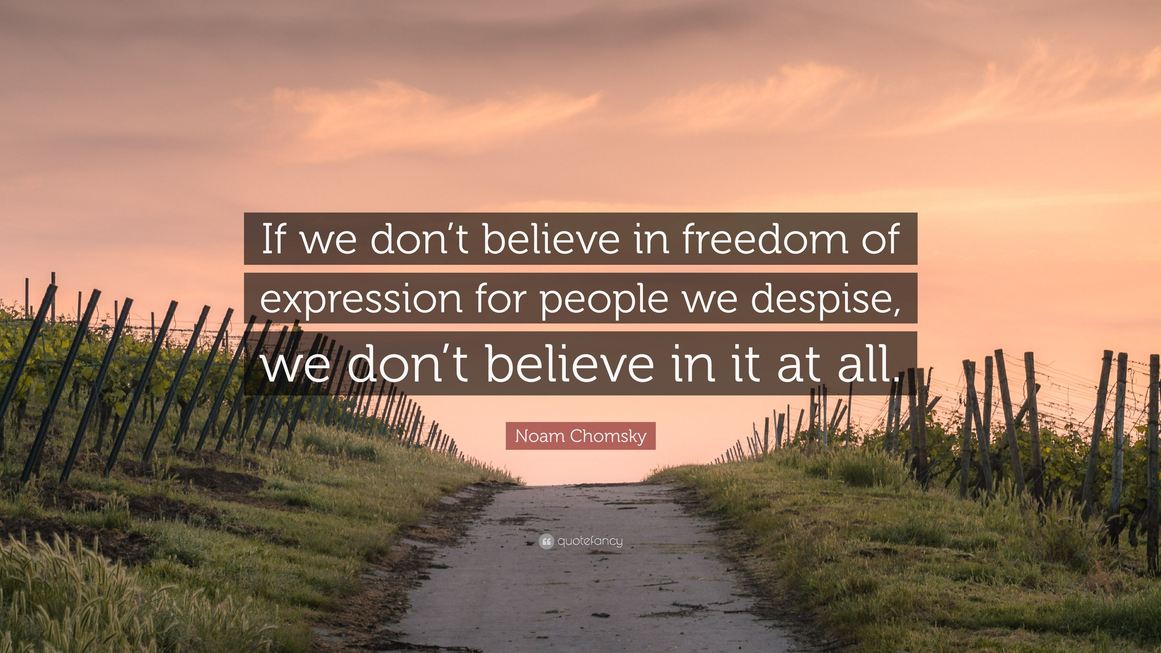 If we don't believe in freedom of expression for people we despise, we don't believe in it at all.