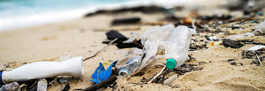 Ending Plastic Pollution