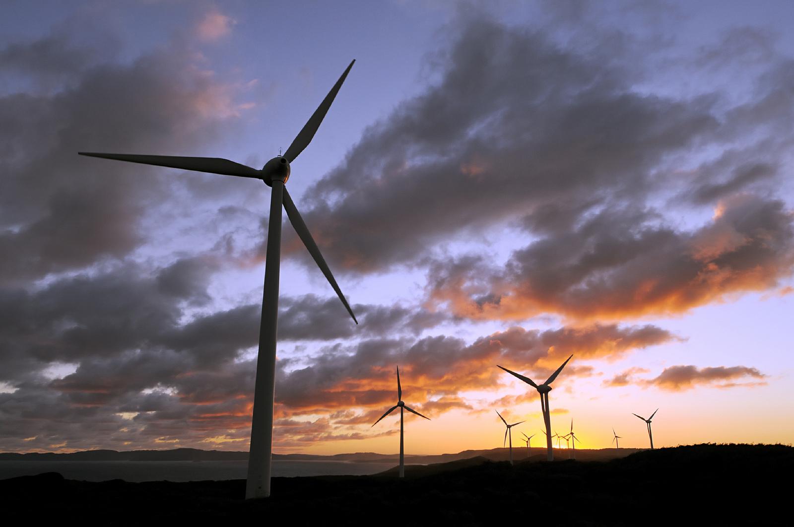 RS24_large-wind-farm.jpeg