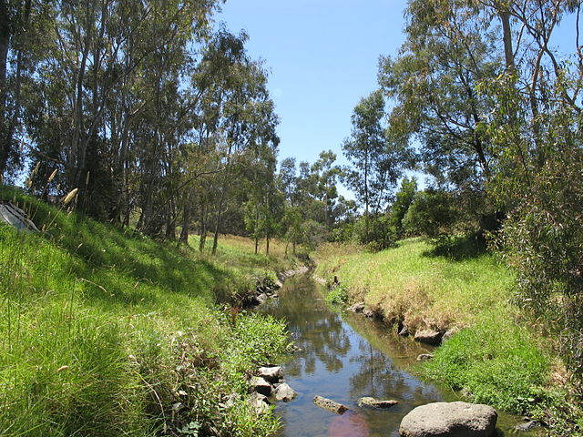 640px-Darebin_Creek.JPG