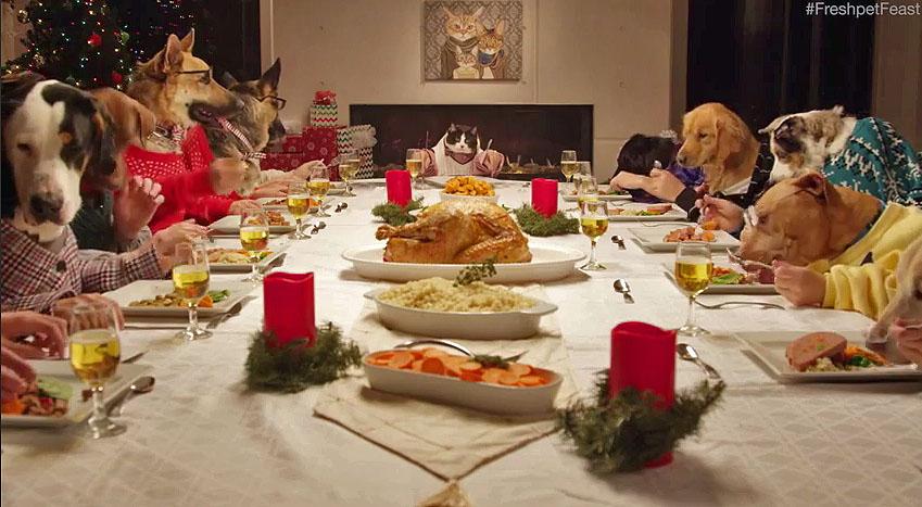 freshpet-feast.jpg