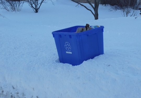 Blue-box-recycling-in-snow.jpg