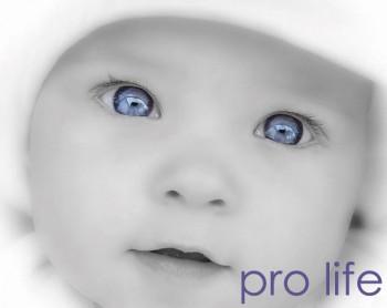 ProLife.jpg