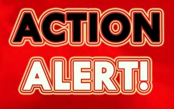action_alert_red.jpg