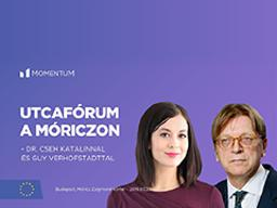 Cseh and Verhofstadt to discuss Europe's future