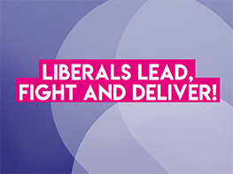 2020 a key year for European Liberals, despite challenges