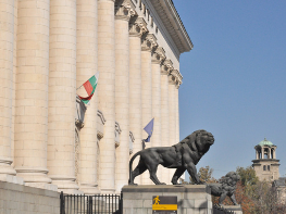 MRF set to gain seats in parliament as Bulgaria votes in second snap elections