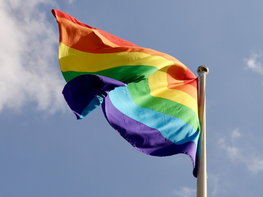 Swiss liberals campaign for LGBTIQ+ family rights and welcome referendum result