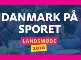 Radikale Venstre meets for a virtual congress