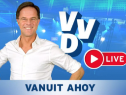 VVD Festival goes live
