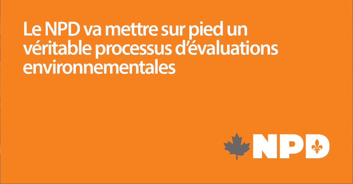 Template_processus-d_evaluation_environnementale.jpg